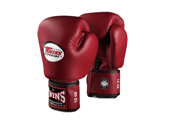 twin-special-boxing-gloves